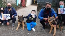 Cani adottati