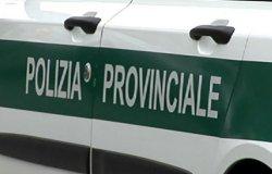 Livorno Ferraris: abbandona rifiuti in campagna, multato