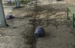 Trino: sacchi di rifiuti davanti al campo sportivo