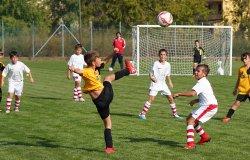 Calcio giovanile: le date d'inizio dei campionati