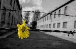 Giorno della Memoria: le deportazioni in Piemonte e oltre