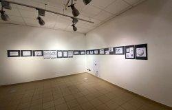 In mostra a Biella '72 balene e altri animali'