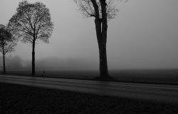 Vercelli: ancora nebbie ma temperature in aumento