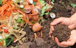 Con il compostaggio domestico Tari ridotta del 10 per cento