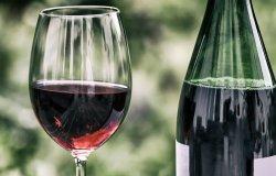 Piemonte: bando da 2,7 milioni per le aziende vitivinicole
