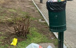 Giro di vite contro chi sporca i giardini