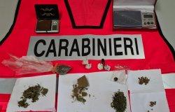 Nasconde droga in casa: arrestato un trentenne