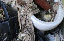 Domenica 18 aprile si raccolgono i rifiuti nei boschi