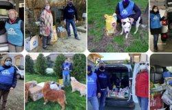 """""""Diamo aiuti alimentari per gli animali delle famiglie in difficoltà"""""""