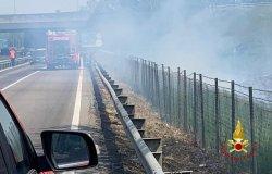 Vasto incendio di sterpaglie sulla Sp 11