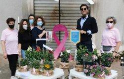 Stand con fiori e piante aromatiche: 'Grazie alla generosità del paese'