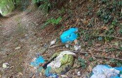 """""""Arpulisuma al bosc"""": domenica 16 giornata di pulizia"""