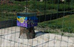 Vercelli: inaugurata l'Oasi delle api nella casa circondariale