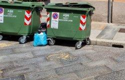 """Vercelli: """"Nel parcheggio per disabili c'è un cassonetto per il vetro"""""""