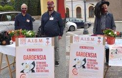 Bersaglieri in piazza per sostenere la ricerca sulla sclerosi multipla