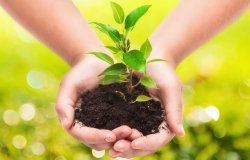 Benessere e salute dipendono da come trattiamo le risorse