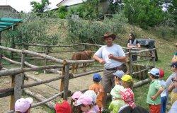 Nuovo regolamento per le fattorie didattiche del Piemonte