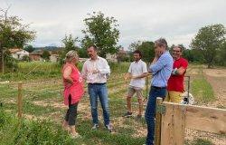 Regione: sostegno degli agricoltori vercellesi danneggiati dalla grandinata