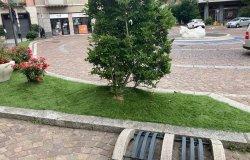 Se l'erba non cresce in certe aiuole,  si passa al prato sintetico