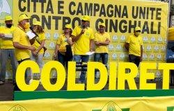 Protesta contro i cinghiali a Torino