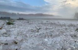"""Confagricoltura Piemonte: """"Pesanti danni all'agricoltura"""""""