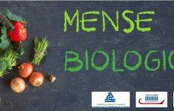 Piemonte: accordo per sostenere l'uso dei prodotti bio nelle scuole