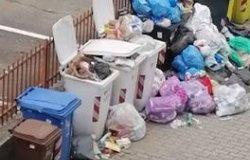 """Via Ranghino e via Ferrari: """"Da settimane qui non passano a ritirare i rifiuti"""""""
