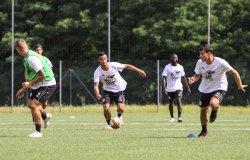 Pro Vercelli: annullata l'amichevole contro il Torino