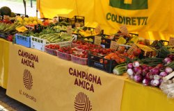 Campagna Amica fa tappa a Vercelli