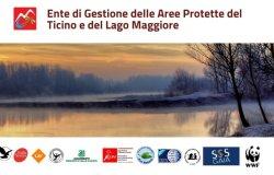 """""""Ente di gestione Aree protette del Ticino: grave degrado nella gestione"""""""