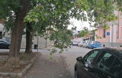 Vercelli: ramo pericoloso e viale buio