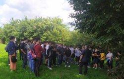 Ipsia Magni e Iti Lirelli: educazione civica tra gli alberi