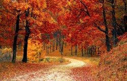 Foliage in Piemonte 2021: i luoghi da non perdere