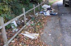 """Provincia di Vercelli: i bordi delle strade """"ripuliti"""" dai rifiuti"""