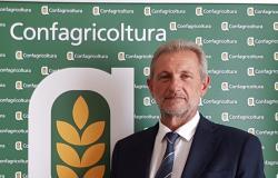 Confagricoltura Vercelli Biella: Benedetto Coppo nuovo presidente