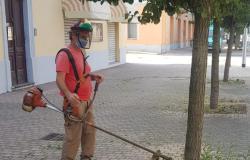 Trino: continua l'opera di diserbo abbinato meccanico ed ecologico