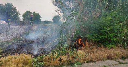 Sterpaglie incendio