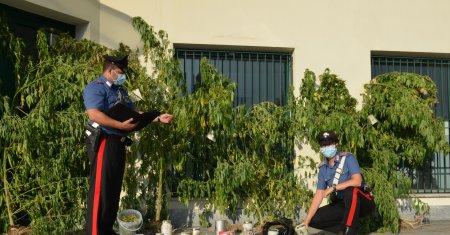 Carabinieri Biella