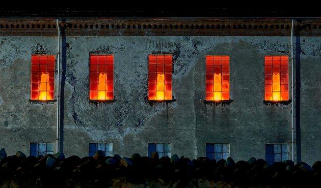 Tollegno 1900 Lupi di luce